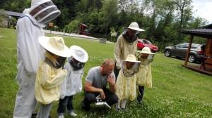 podglądamy pszczoły przy pracy